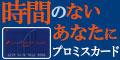 プロミス-120×60-20140611